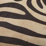 brown and beige zebra