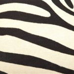 black and ivory zebra